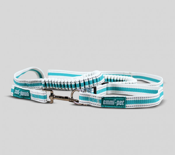 Dog Leashes and Collars / Small or Larg